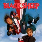 Паршивая овца / Black Sheep