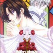 Потомки тьмы / Yami no Matsuei (Descendants of Darkness) все серии