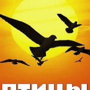Птицы: Крылья природы / Les ailes de la nature все серии