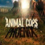 Полиция Феникса: Отдел по защите животных / Animal Cops: Phoenix все серии
