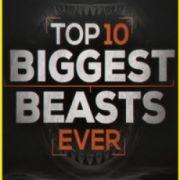 Топ-10 мегамонстров / Top-10 Biggest Beasts Ever