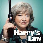 Закон Хэрри / Harry s Law все серии