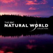 BBC: Живой мир / The Natural World все серии