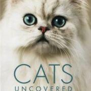 Кошачьи тайны / Cats uncovered все серии
