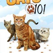 Энциклопедия кошек / Cats 101 все серии