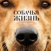 Собачья жизнь / A Dog's Purpose