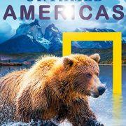 Дикая природа Америки / Untamed Americas все серии