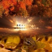BBC: Чудеса времен года / Seasonal Wonderlands все серии