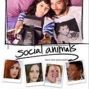 Погоня за любовью / Social Animals