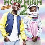 Торчки 2 / How High 2