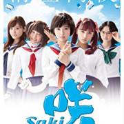 Саки  / Saki