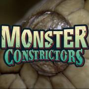 Гигантские змеи. Удавы / Monster Constrictors