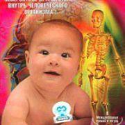BBC: Тело человека / BBC: The Human Body все серии