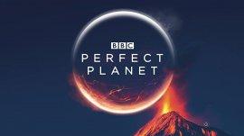 Идеальная планета / A Perfect Planet смотреть онлайн