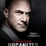 Закон и порядок: Организованная преступность /  Law & Order: Organized Crime все серии