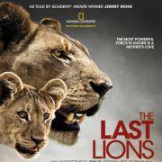 Последние львы / The Last Lions