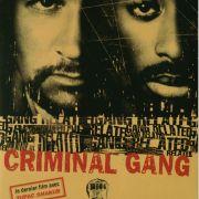 Преступные связи / Gang Related