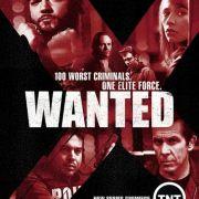 Объявлен в розыск / Wanted все серии