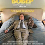 Бобер / The Beaver