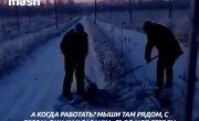 В Самарской области рабочих вывели полоть траву под снегом в -25