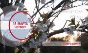 Погода в Красноярском крае на 18.03.2021