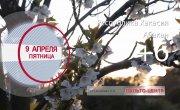 Погода в Красноярском крае на 09.04.2021