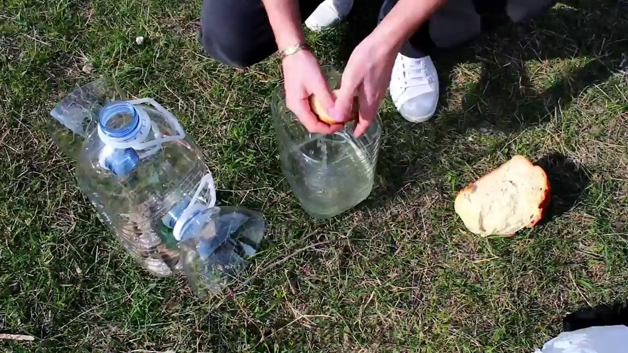 Как сделать ловушку для рыбы из пластиковой бутылки