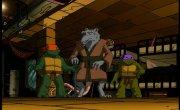 Черепашки ниндзя. Новые приключения / Teenage Mutant Ninja Turtles - 3 сезон, 13 серия