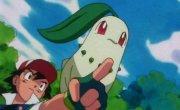 """Покемон / Pokemon - 3 сезон, 134 серия """"""""Да что ж это такое"""""""""""