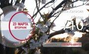 Погода в Красноярском крае на 23.03.2021