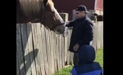 Шкила кормит лошадку