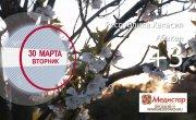 Погода в Красноярском крае на 30.03.2021