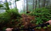 GoPro_Foggy_Forest_MTB