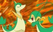 """Покемон / Pokemon - 14 сезон, 10 серия """"Битва За Клубное Чемпионство"""""""