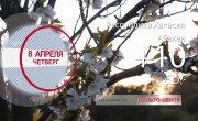 Погода в Красноярском крае на 08.04.2021