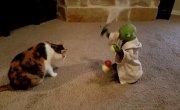Котейка играет с игрушкой.