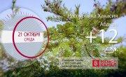 Погода в Красноярском крае на 21.10.2020
