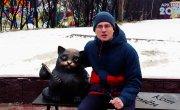 История мурманского кота-путешественника