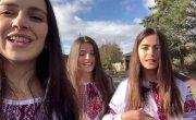 Trio Mandili - Pidmanula