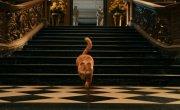 Гарфилд 2: История двух кошечек / Garfield: A Tail of Two Kitties - Фильм