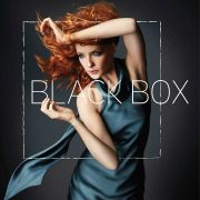 Чёрный ящик / Black Box все серии