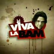 Да здравствует Бэм! / Viva la Bam все серии