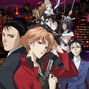 Рёко Якусидзи и загадочные преступления / Yakushiji Ryouko no Kaiki Jikenbo все серии