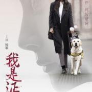 Свидетель / Wo shi zheng ren (The Witness)