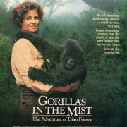 Гориллы в тумане: История Дайан Фосси / Gorillas in the Mist: The Story of Dian Fossey