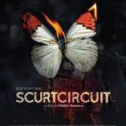 Короткое Замыкание / Scurtcircuit
