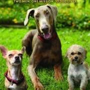 Жизнь в собачьей будке / Life in the Doghouse
