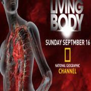 Внутри живого тела / Inside the Living Body