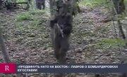 Лавров рассказал правду о действиях НАТО в Югославии