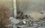 боевик араб отправился к Аллаху